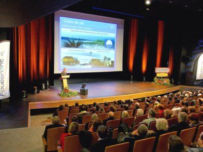 260391-archipel-visuel-salle-spectacle